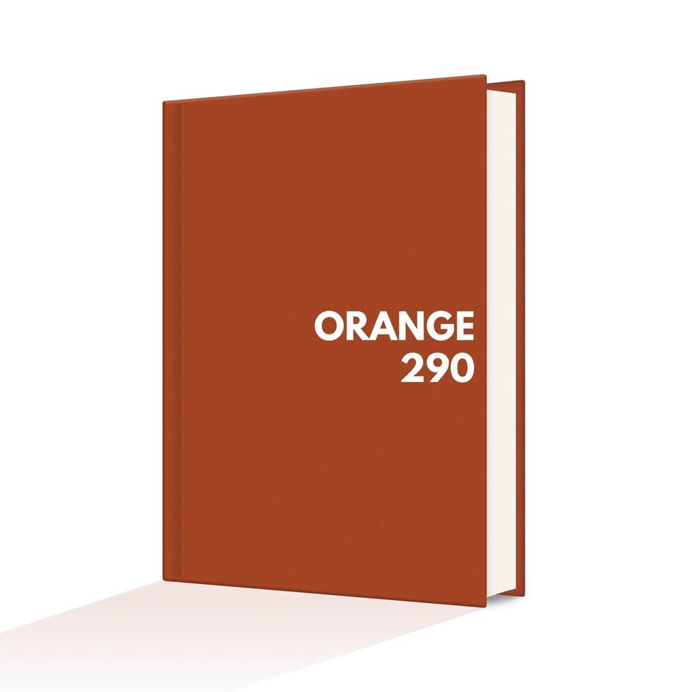orange290.jpg