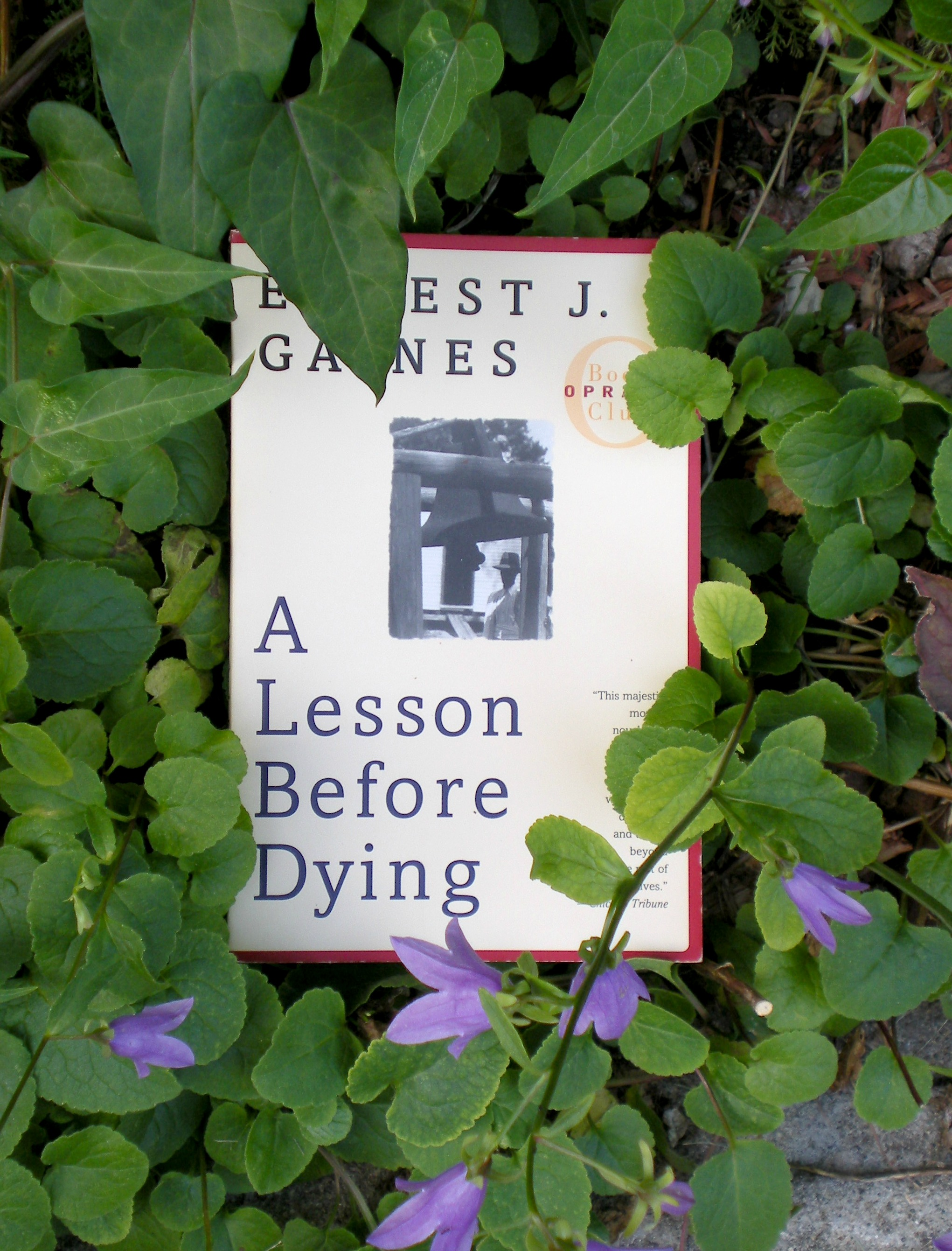 What I Read: A Lesson Before Dying
