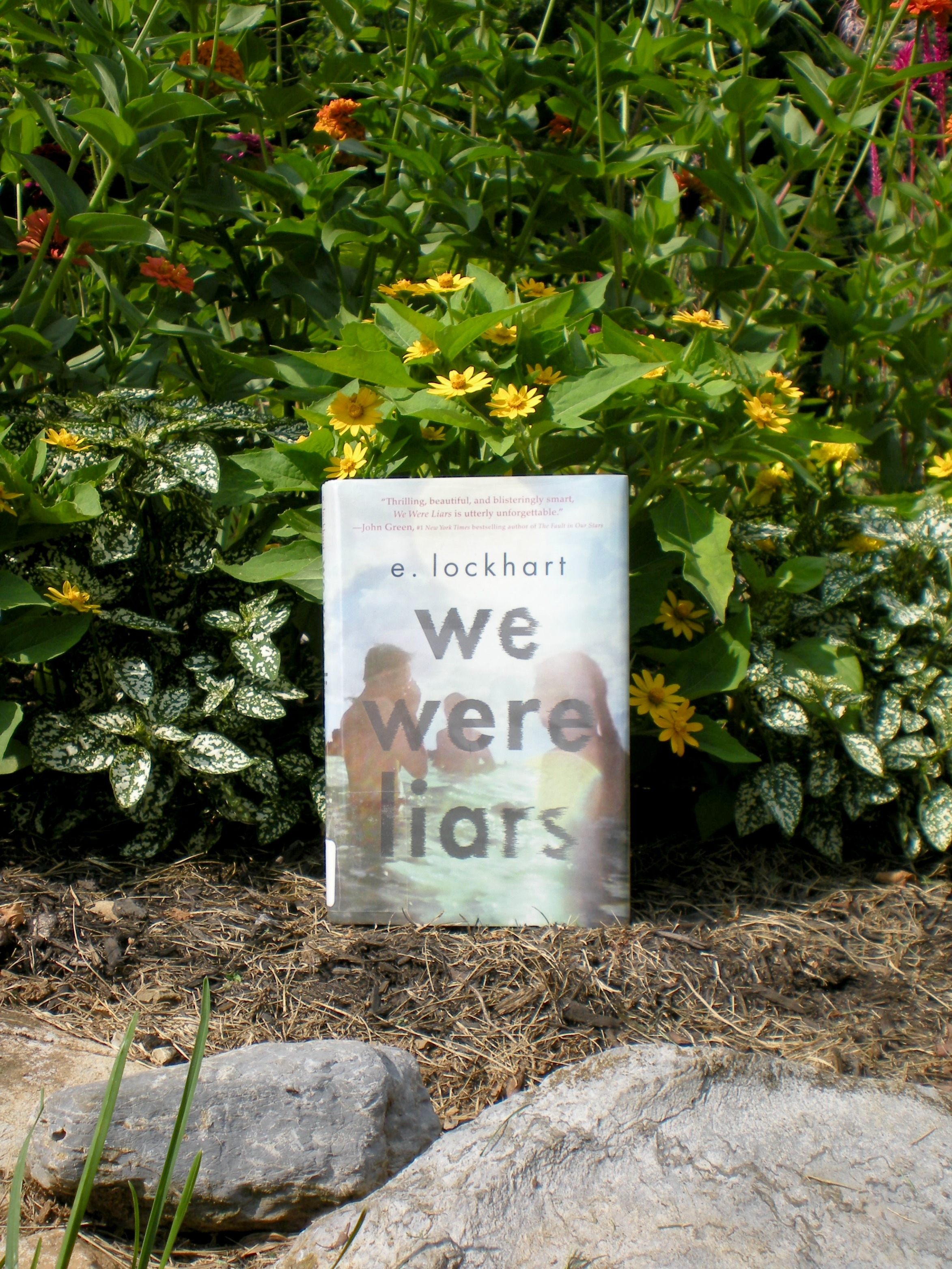 What I Read: We Were Liars | Scribbling in the Margins blog