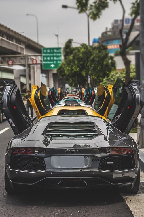 johnny-escobar :     Lamborghini Aventador's