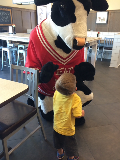 when all else fails go to Chick-fil-A. Entertainment. Food. Ice Coffees. and of course The Cow.