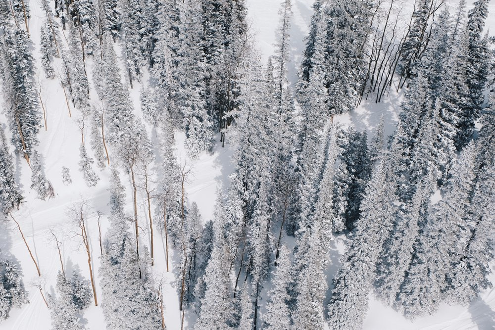 Ski Aspen, Travel Guide to Aspen