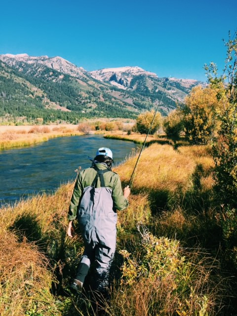 Fly-fishing, . Travel Guide to Jackson Hole, Wyoming