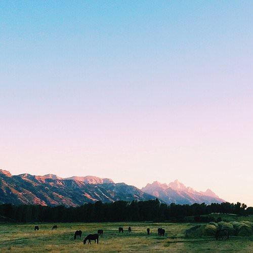 .Grand Teton National Park, Travel Guide to Jackson Hole, Wyoming