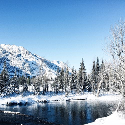 . Travel Guide to Jackson Hole, Wyoming