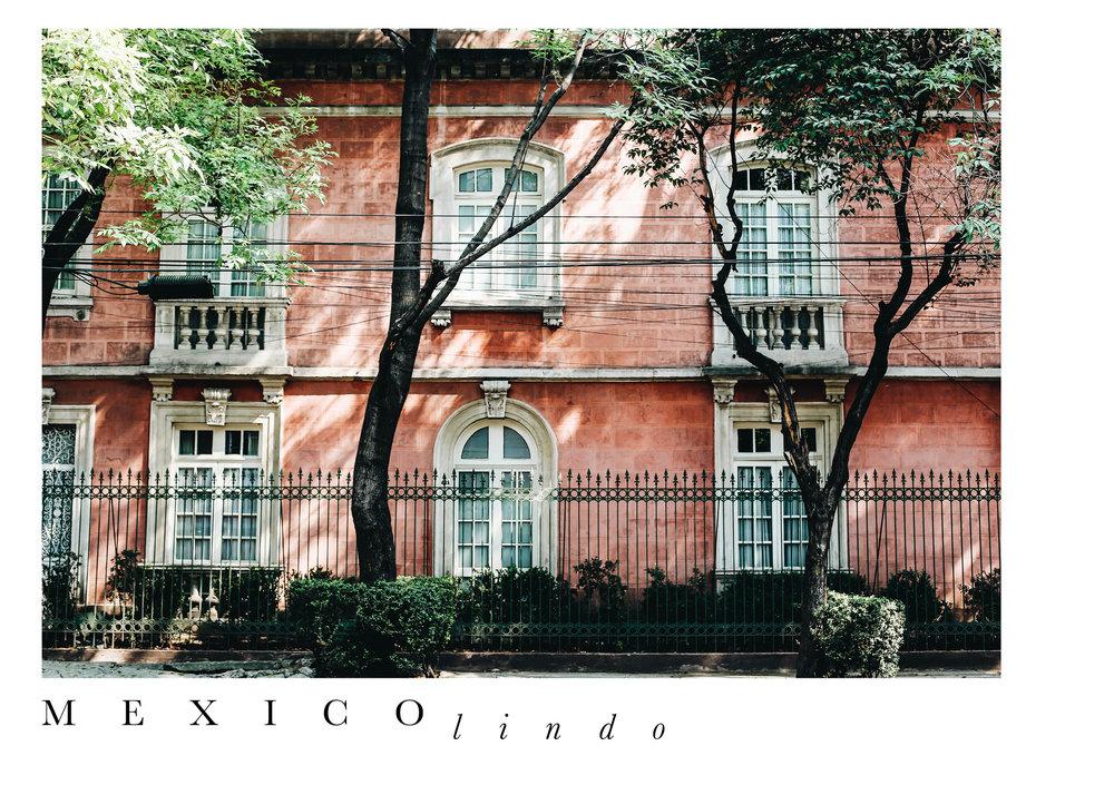 The Far & Near, Dulci Edge, Mexico City Travel Guide