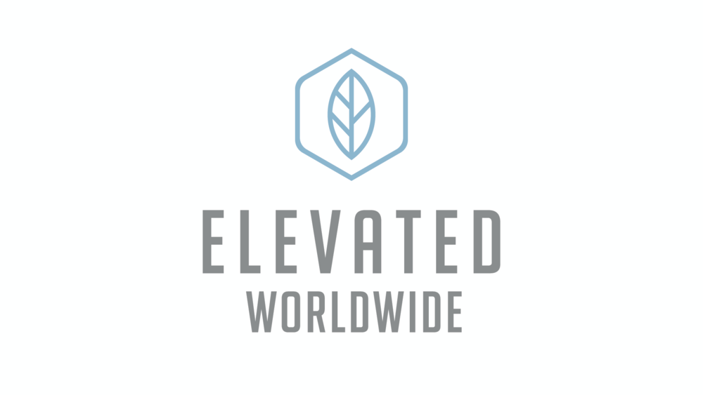 elevated_worldwide.png