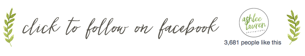 follow on facebook footer.jpg