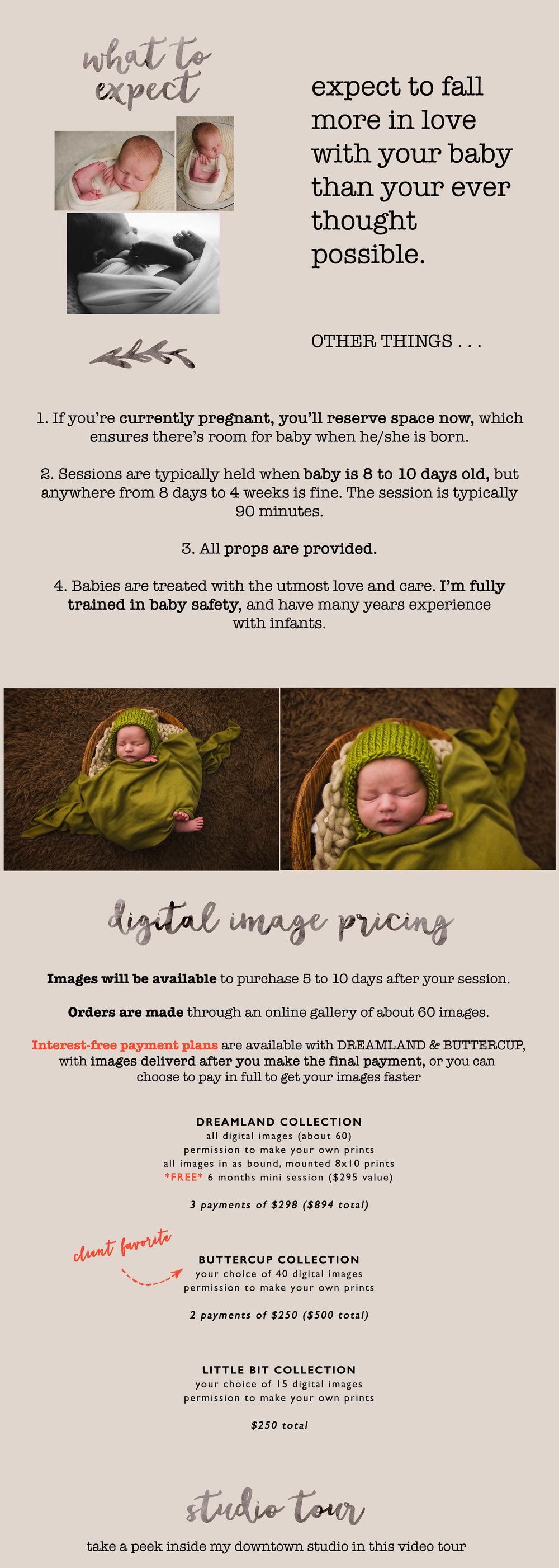 newborn info 2 copy copy 2.jpg