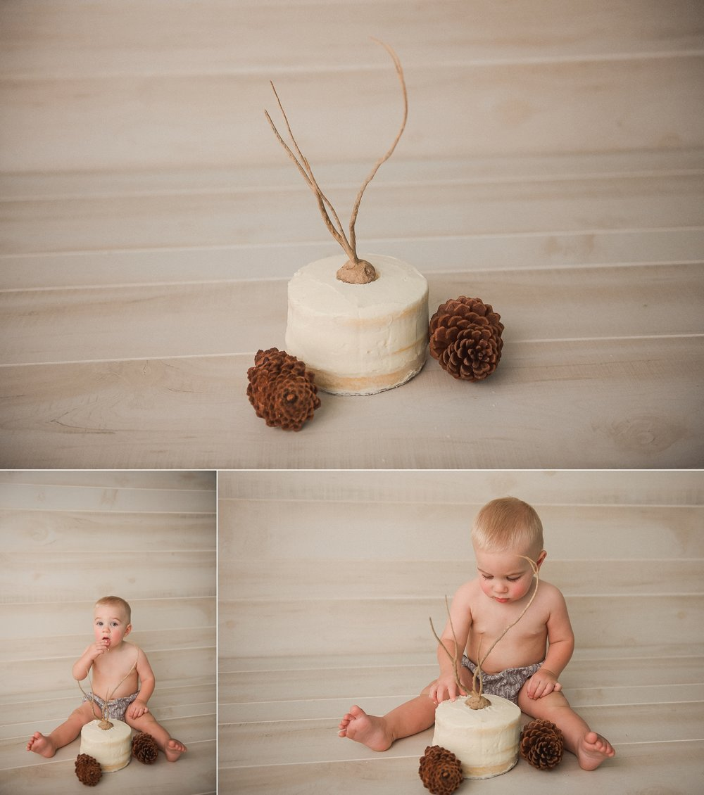 indianapolis-newborn-photographer_0391.jpg