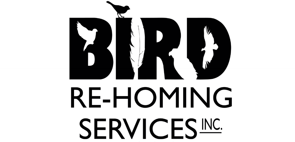 Bird Re-Homing Services Inc