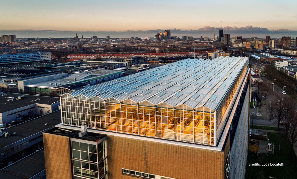Urban Farmers: The largest rooftop greenhouse in Europe!
