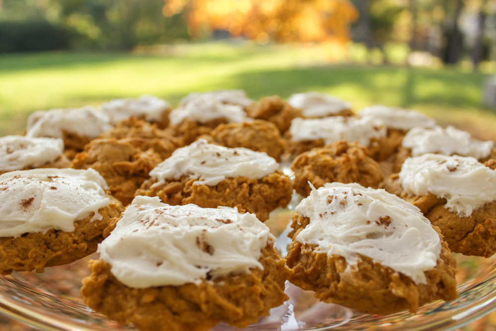 Enjoy! These little fluffy pumpkin pillows should  really  melt in your mouth.