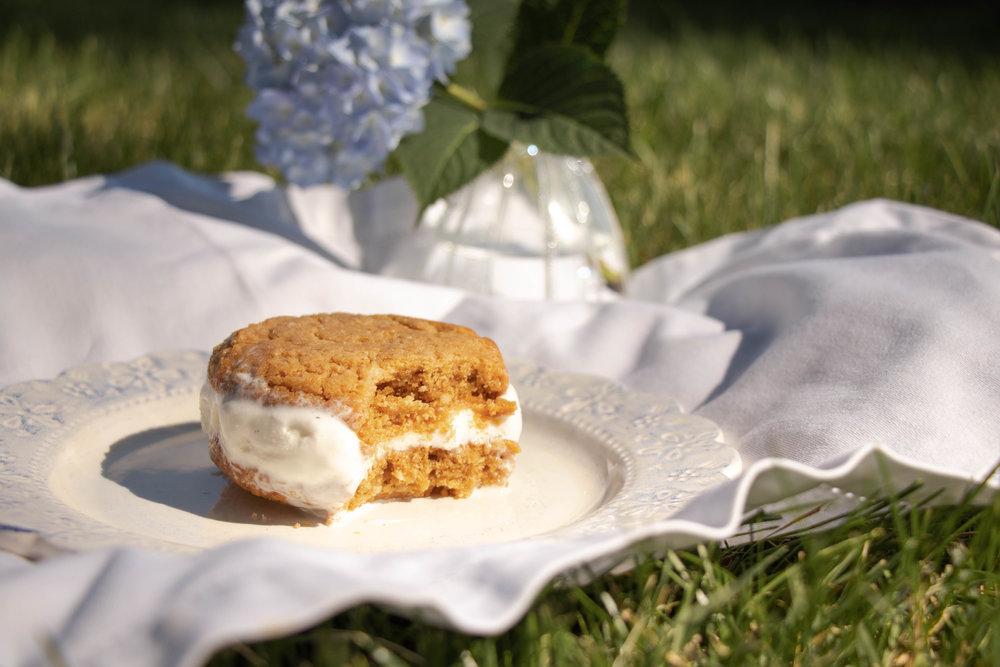 Ice Cream Sandwich Picnic