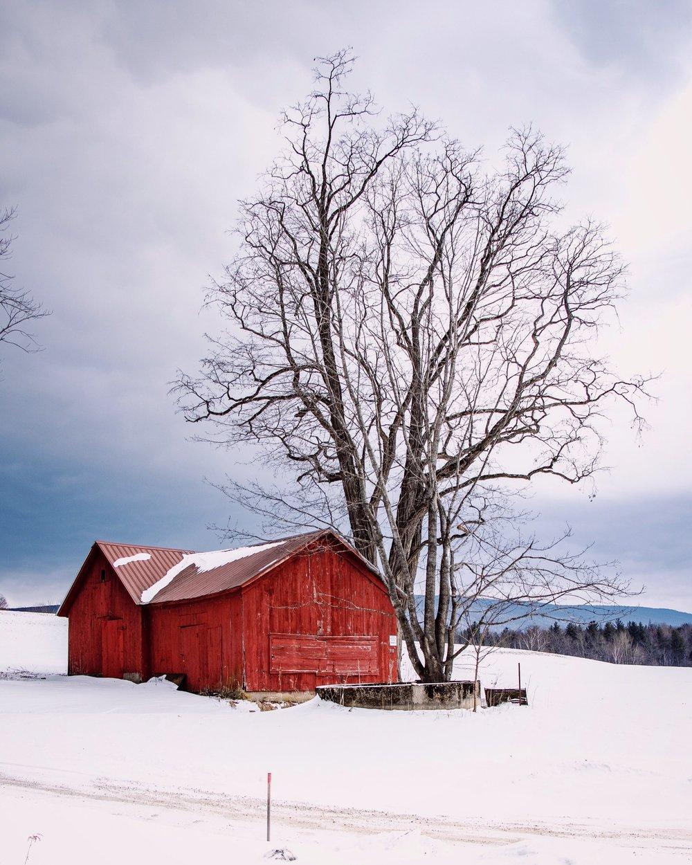 Overlook Red Barn_Manchester Vermont_Winter_February 2019.JPG