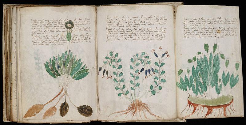Voynich-manuskriptet