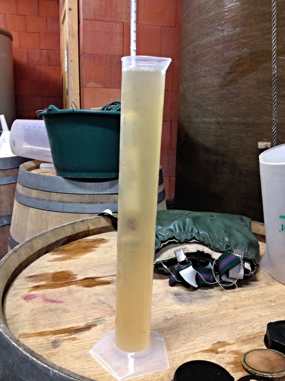 The progress of alcoholic fermentation in the must must be checked every day ...