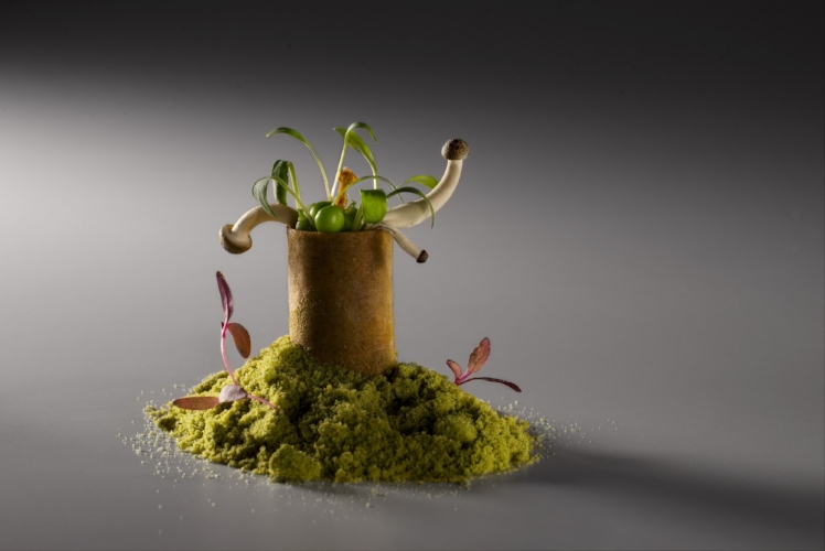 Mushroom Roll by Chef Gaggan Anand