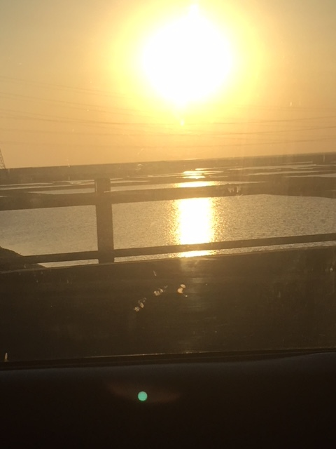 Dawn over salt pans en route to Saurashtra coast