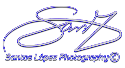 SANZEi Photography
