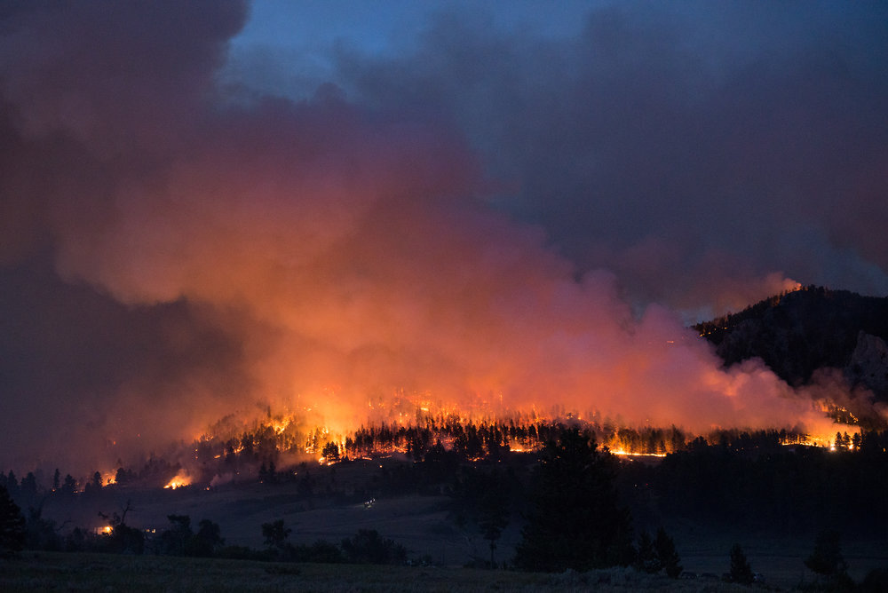 Firefighting crews battled around the clock as the July Fire burned over 11,000 acres.