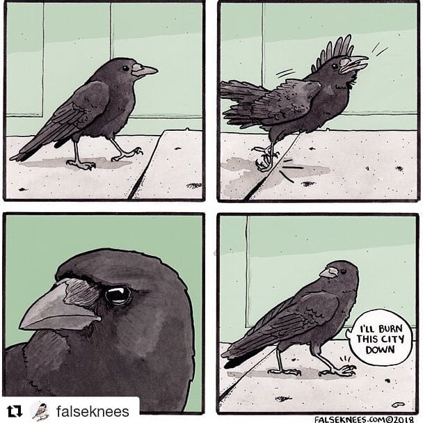 Totally.  #Repost @falseknees (@get_repost) ・・・ Be sure to check out the Kickstarter book I'm in! Link in bio 🦆