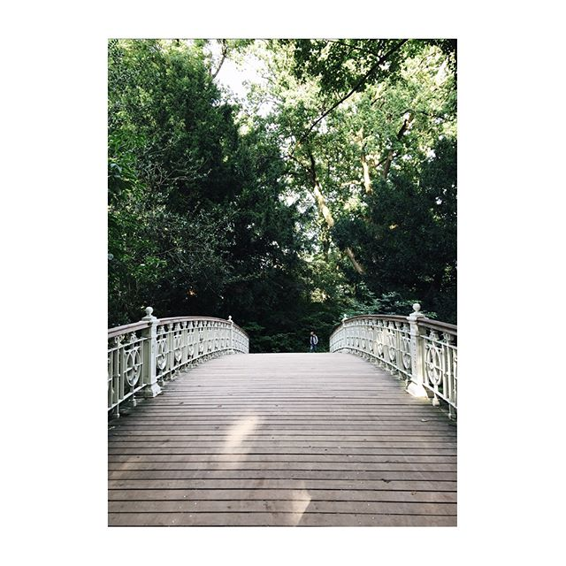 Last one from our September trip to Amsterdam. A beautiful bridge in Vondelpark & touches of green in the ever cool Jordaan. #prettycityamsterdam