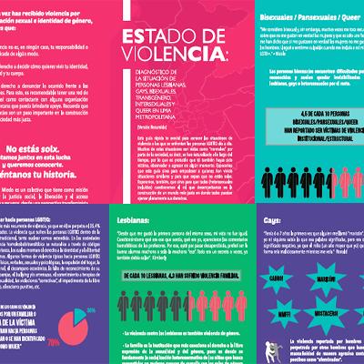 """ESTADO DE VIOLENCIA (Versión Resumida), 2015    Resumen de """"Estado de Violencia"""" priorizando los datos encontrados según las diversas identidades."""