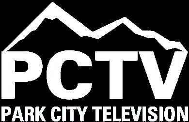 PCTV 390.png