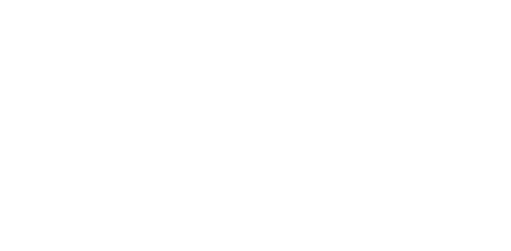 brooklyn film festival winner