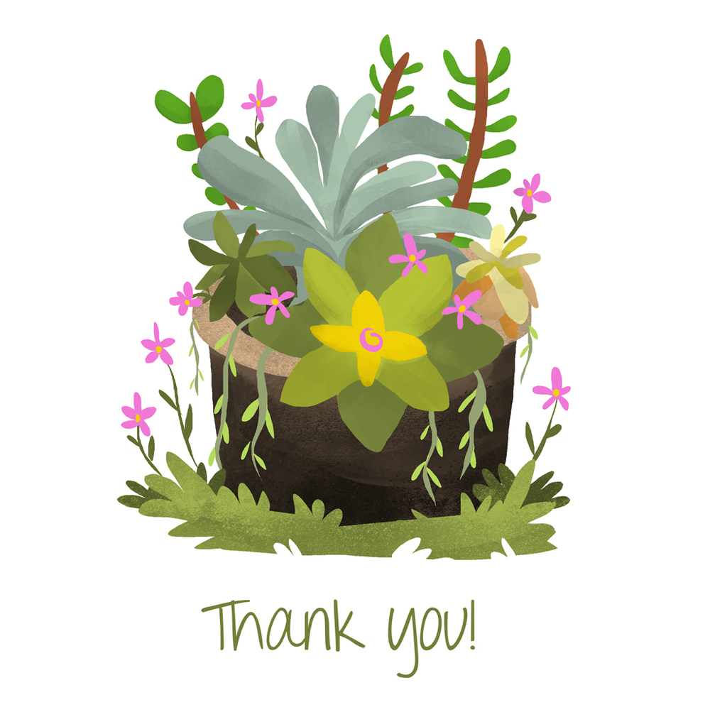 succulent_thank-you.jpg