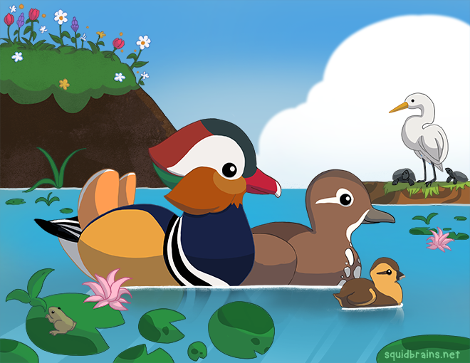 mandarin_duck_family.png