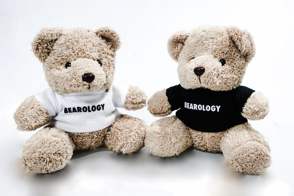 BEAROLOGY Teddy Bear SK Giveaway.jpg