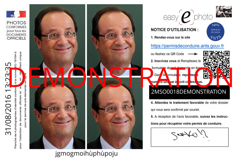 photo+ants+permis+conduire.jpeg