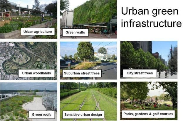 Source: Green Infrastructure Research group