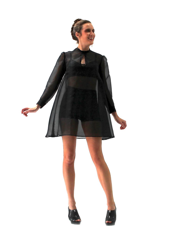 Sheer Silk Organza  Dress.JPG