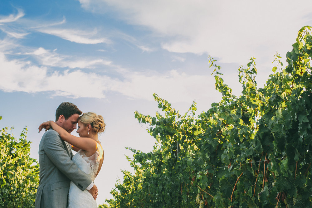 Romance in the Vines at Mount Palomar | Michelle Garibay Events