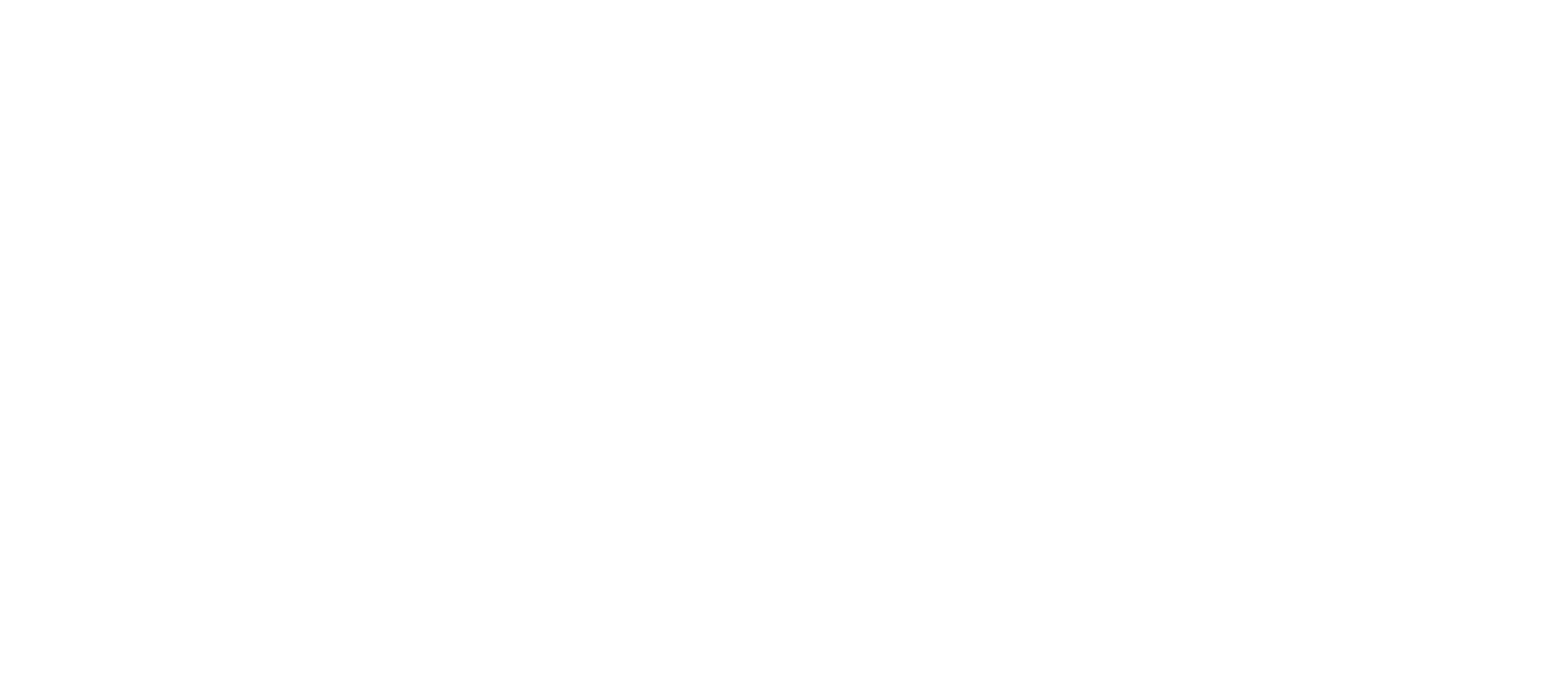 Net Impact Washington DC Professional Chapter