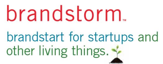 brandstorm logo and type.jpg