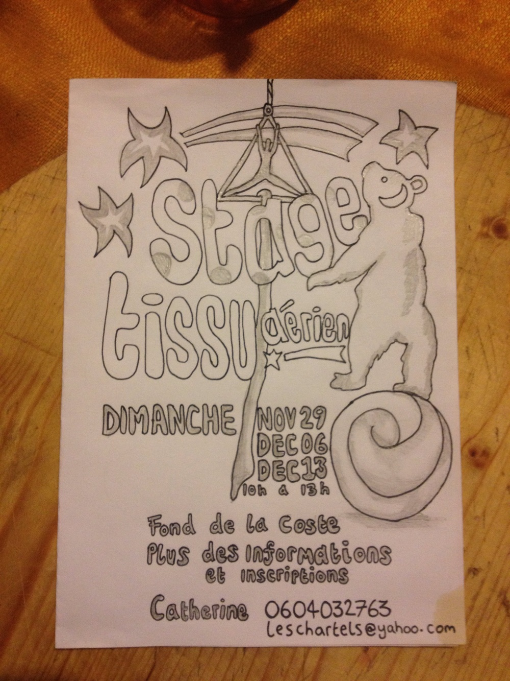 Designing a poster for Cats circus classes.