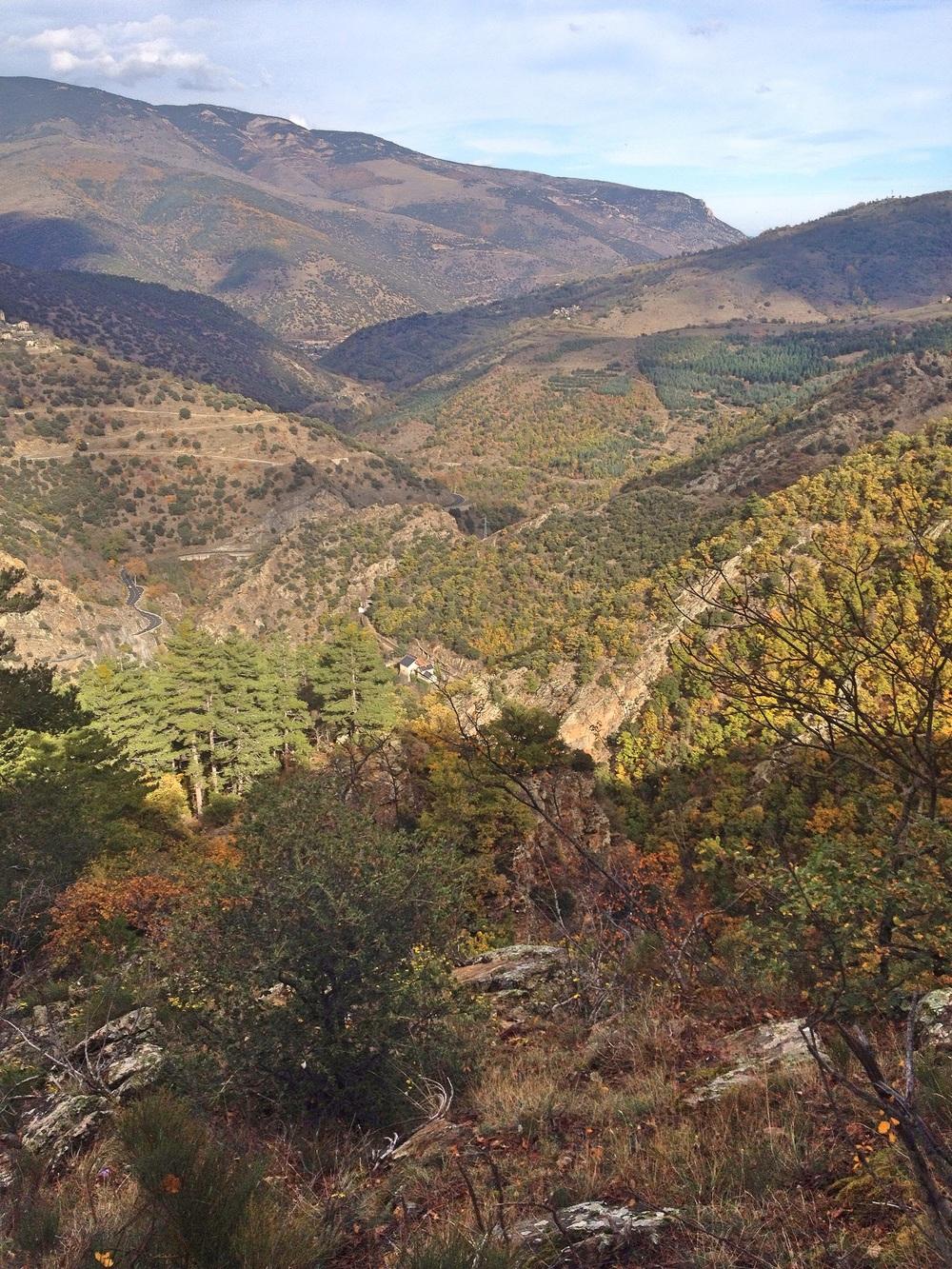 Views on the walk/hike