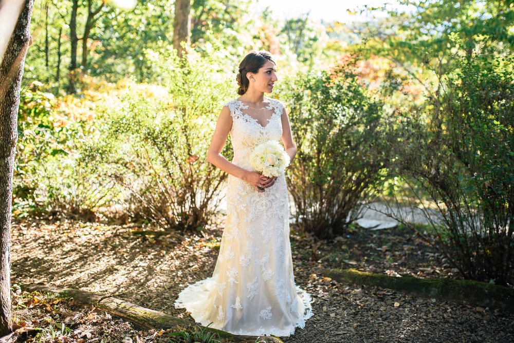 Mountaintop Bridal Portraits - Asheville Wedding Photographer