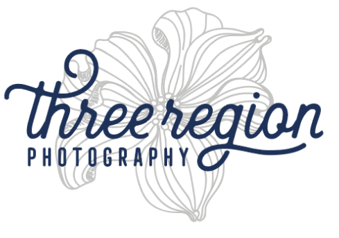 Three Region Photography