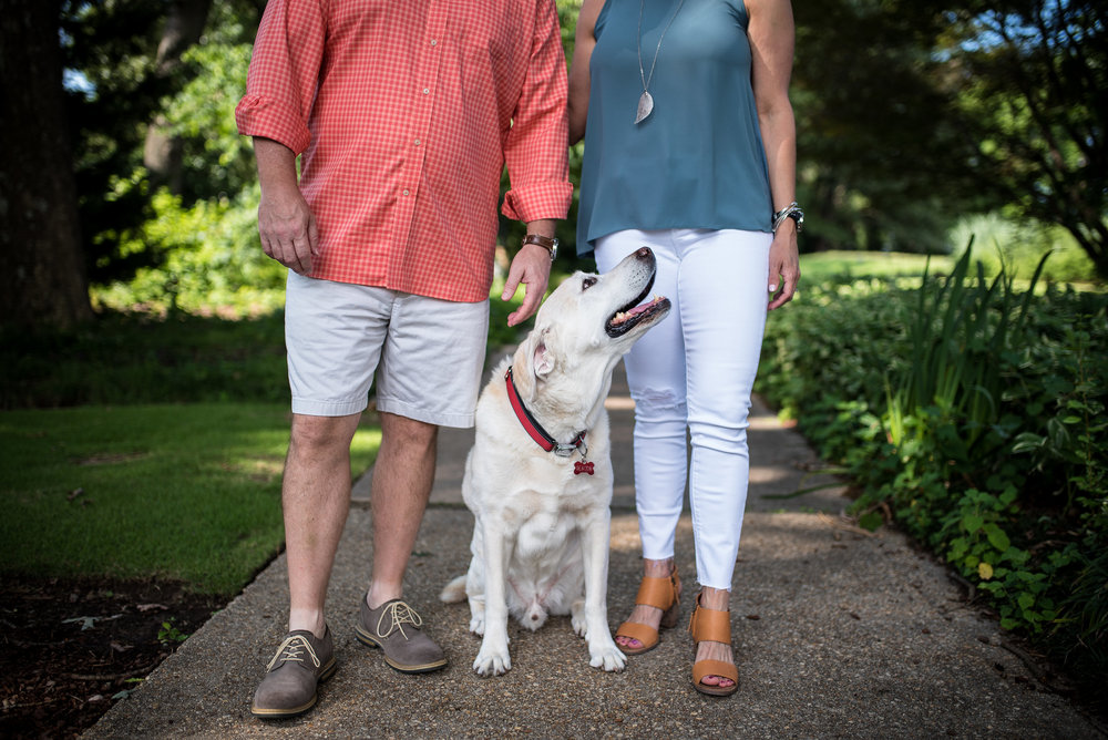 Dog photo shoot - cause for paws - raleigh family photographer
