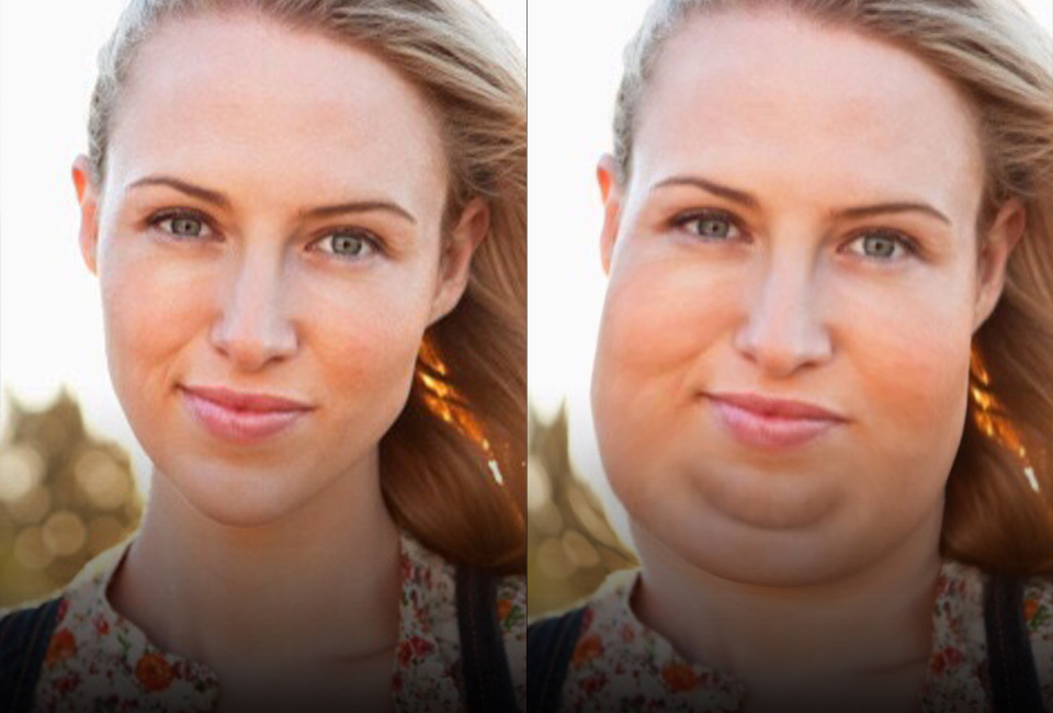<br><br><br><h1>Fatify</h1> <h2>Get fat.</h2></p>