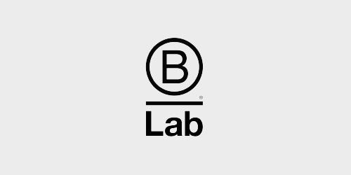 logo_b-lsb.jpg