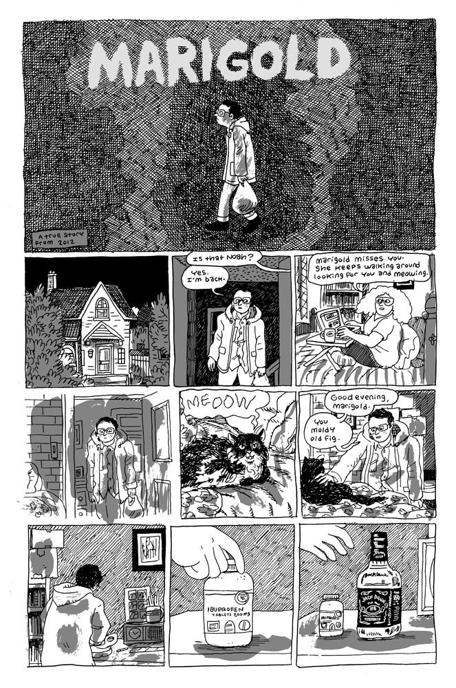 Marigold  pg1, written & drawn by Noah Van Sciver.