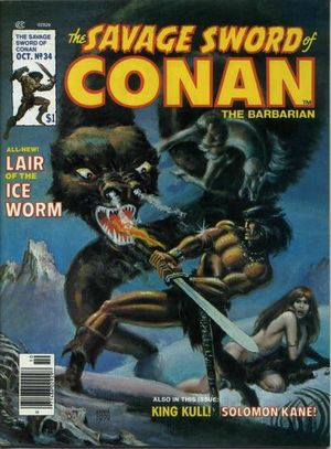 Savage Sword of Conan (1974) #34, cover by Ernie Chan.