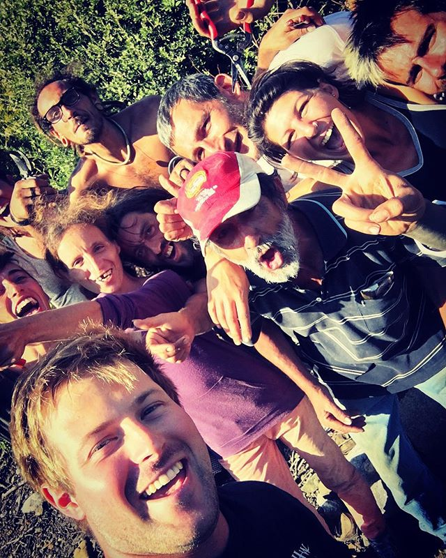 2018 Harvest has officially finished! Till next year! Thank you to the team for picking for 5 weeks. . . . . #vines #outdoors #freshair #hot #working #people #team #work #fun #harvest #wine #winelover #vineyard #vino #sun #countries #france #italy #spain #dutch #irish