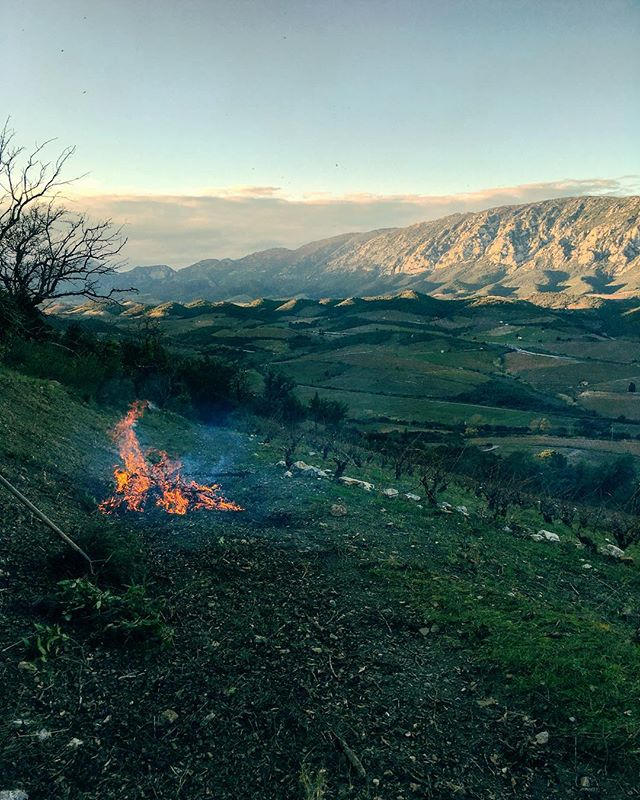 Loving this time of the year, plenty of bonfires to be made whilst working in the vineyards. . . . . #france #outdoors #clouds #high #mountains #freshair #fire #vines #tidy #rocks #fun #adventure #specialplace #climbing #watching #heat #dutch #wine #vino #winestasting #landscape #roussillon